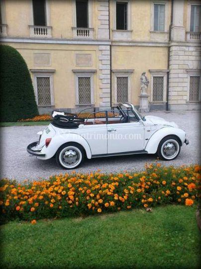 Andrea Auto Matrimoni