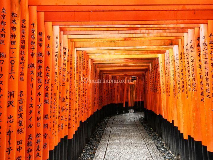 Viaggio Giappone