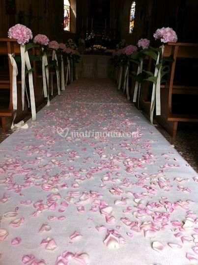 La magia dei petali di rosa