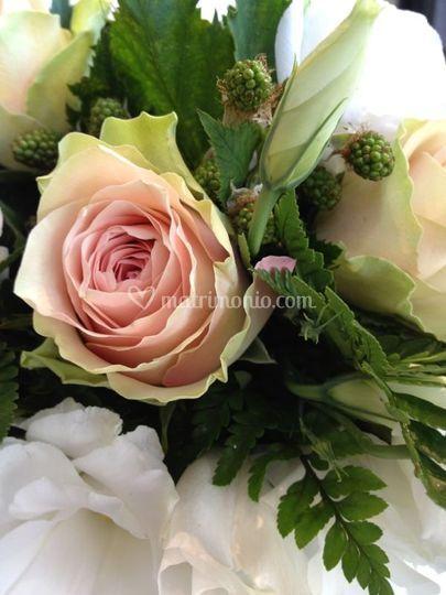 Bouquet rose e more