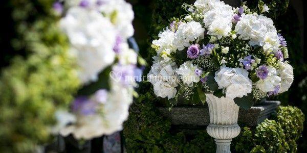Alchemilla Floral Design di Rossi Luciana