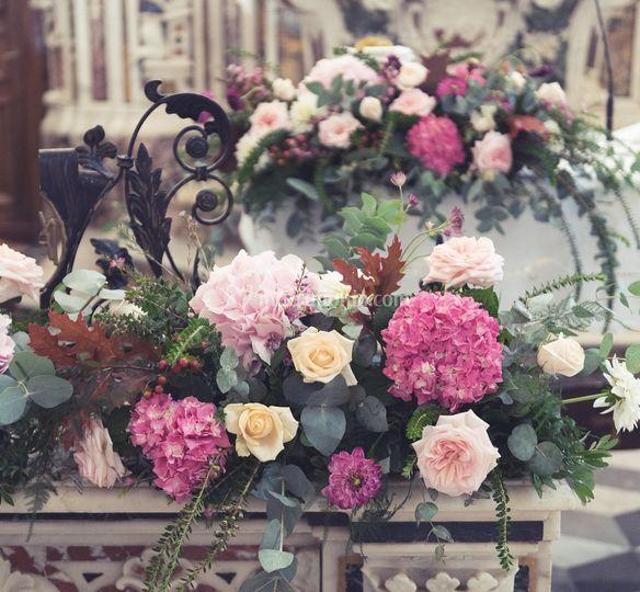 Colella fiori