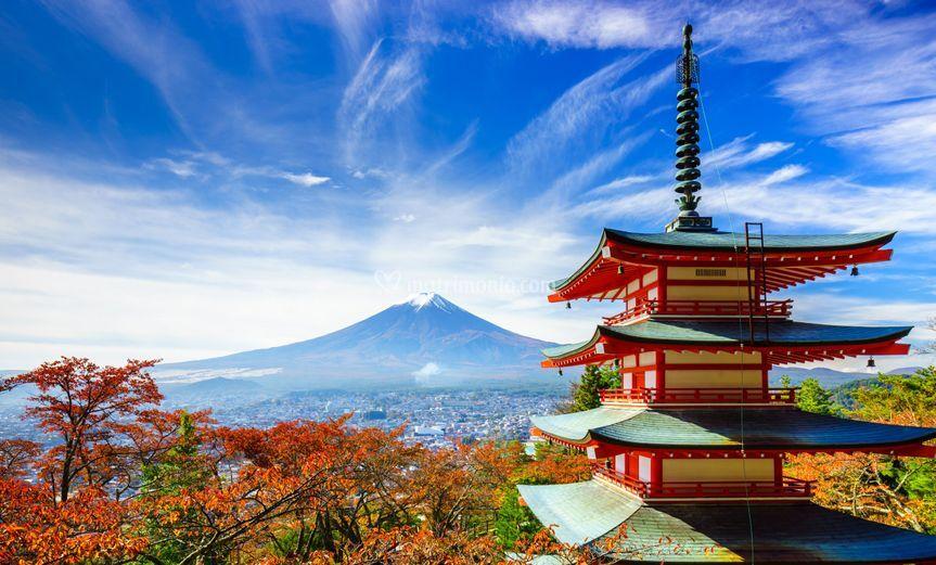 Voglia di Giappone