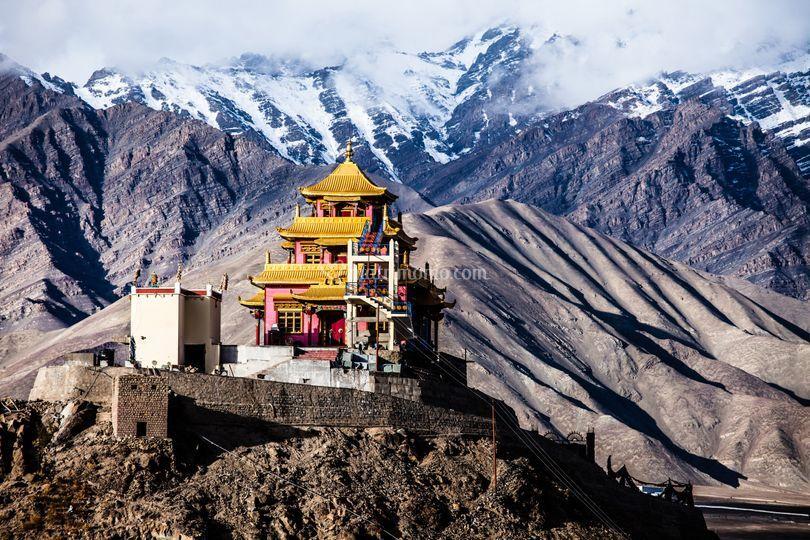 Voglia di Ladakh