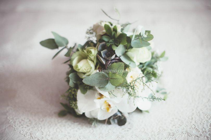 Bouquet con piante grasse