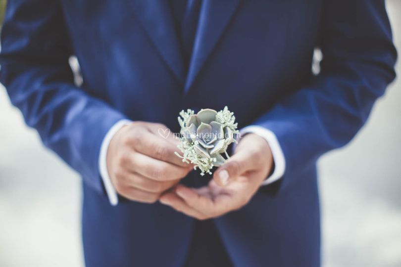 Matrimonio echeveria