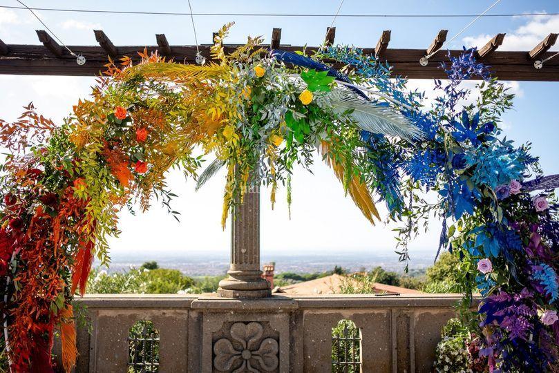 Metamorphosis Floral Studio