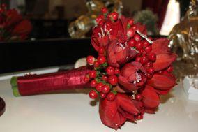 Alchimie Floral Studio