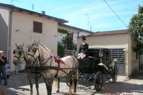 Cavalli e Carrozze