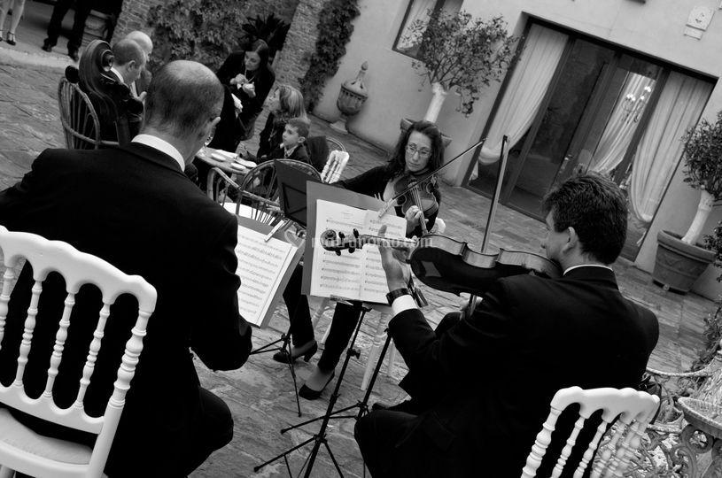 Opera's wedding, la musica