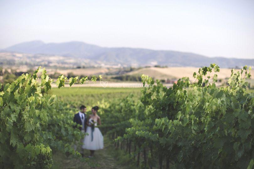 Matrimonio nella natura