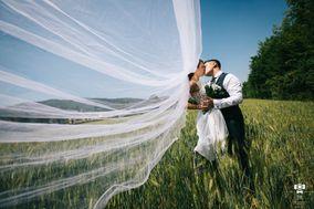 Jerry Reginato Photography