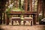 Parole nel bosco: allestimento