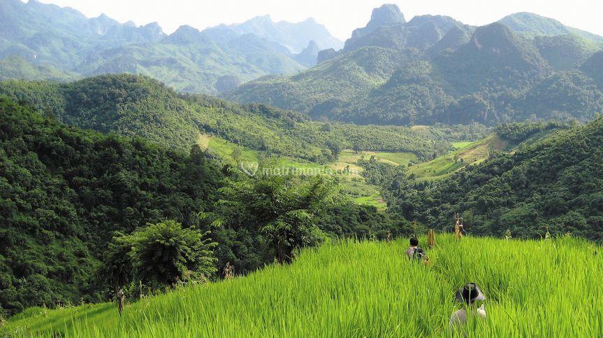 Viaggio di Nozze - Laos