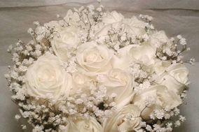 Contessina scalza Flowers