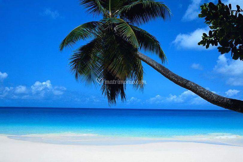 Caraibi, cuba