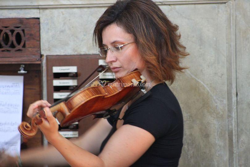 Il violino per la cerimonia