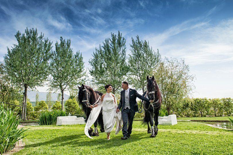 Sposi a cavallo Araba Fenice