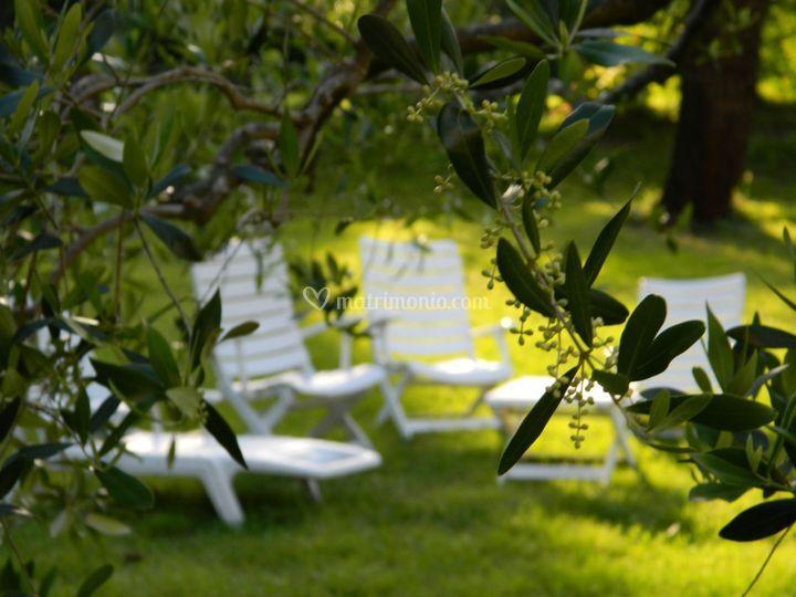Agriturismo campo al sole - Il sole nel giardino ...