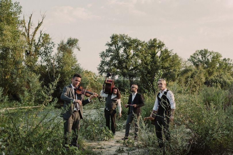 BlackCat Manouche Quartett