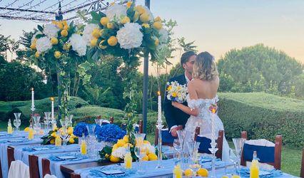 Tarquini Alberta Event and Wedding Planner