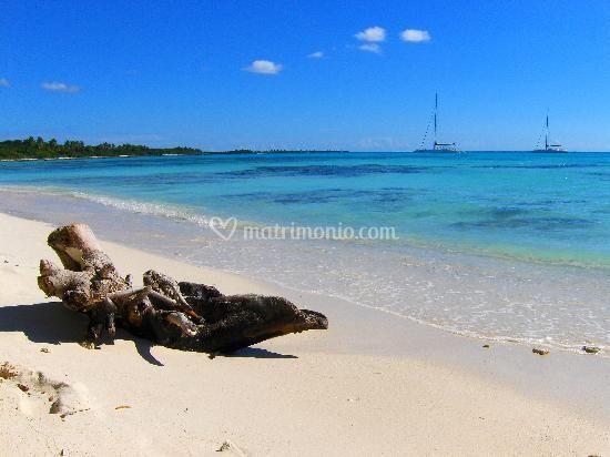 Matrimonio Spiaggia Lampedusa : Octotravel srl