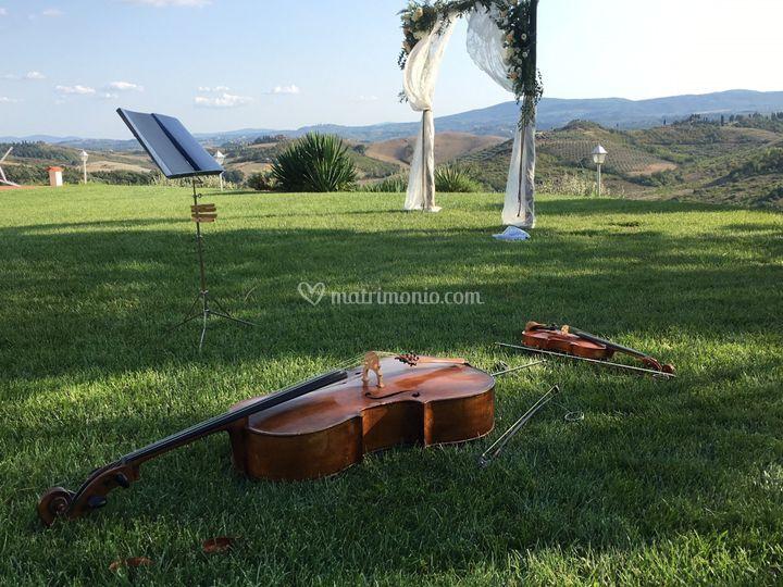 Il violino ed il violoncello