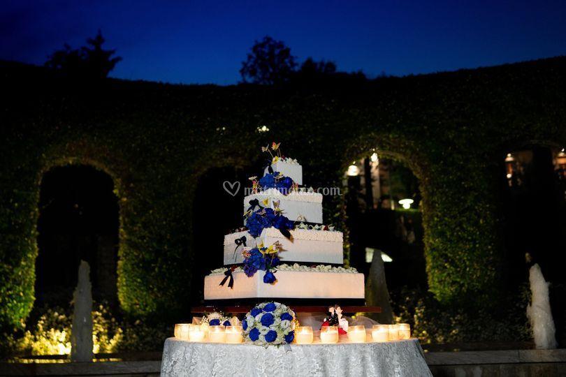 Torta in blu