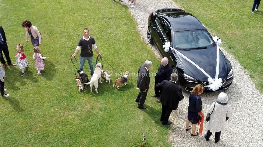 Matrimonio Villa Ormanetto