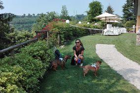 Servizi di Dog Sitter per le Nozze