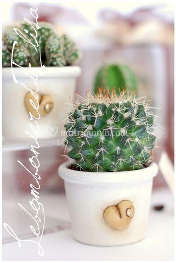 Bomboniere matrimonio piante