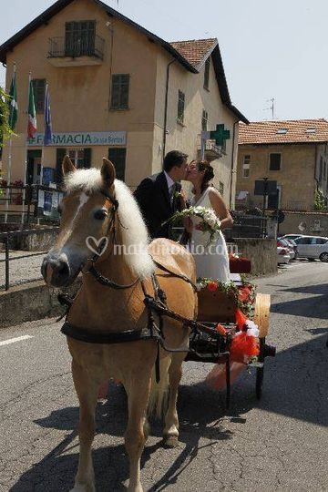 Carrozza ad un cavallo