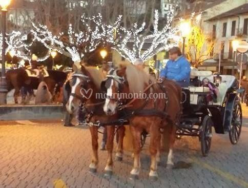 Natale in carrozza
