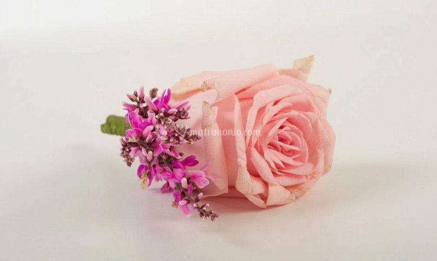 Dettagli rosa