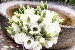 Bouquet sposa lysianthus