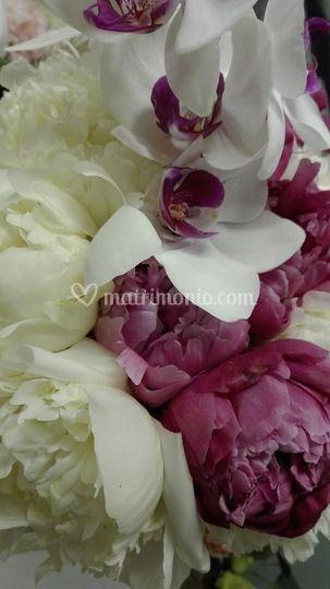 (dettaglio) bouquet