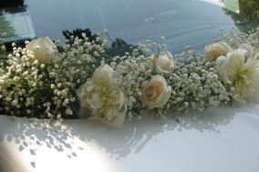 Il Pistillo arte floreale