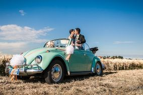auto noleggio matrimonio parma