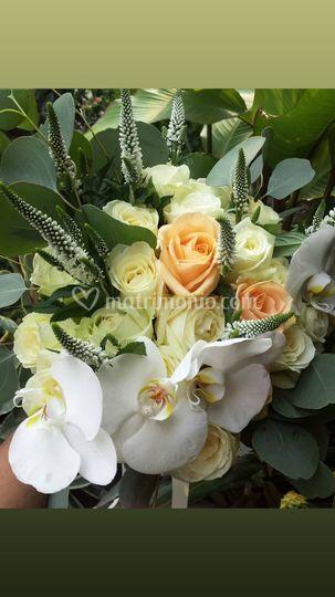 Bouquet Lux