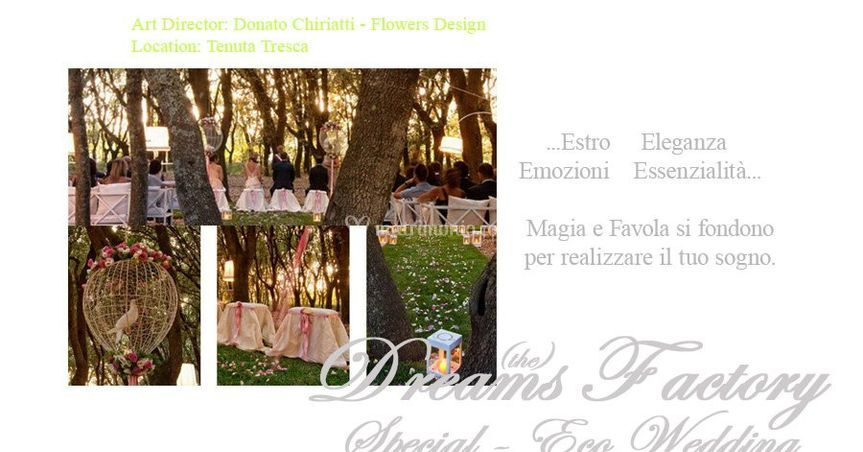The Dreams Factory - Wedding & Events Planner