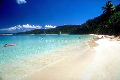 Viaggio Caraibi