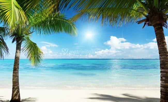 Relax ai Caraibi