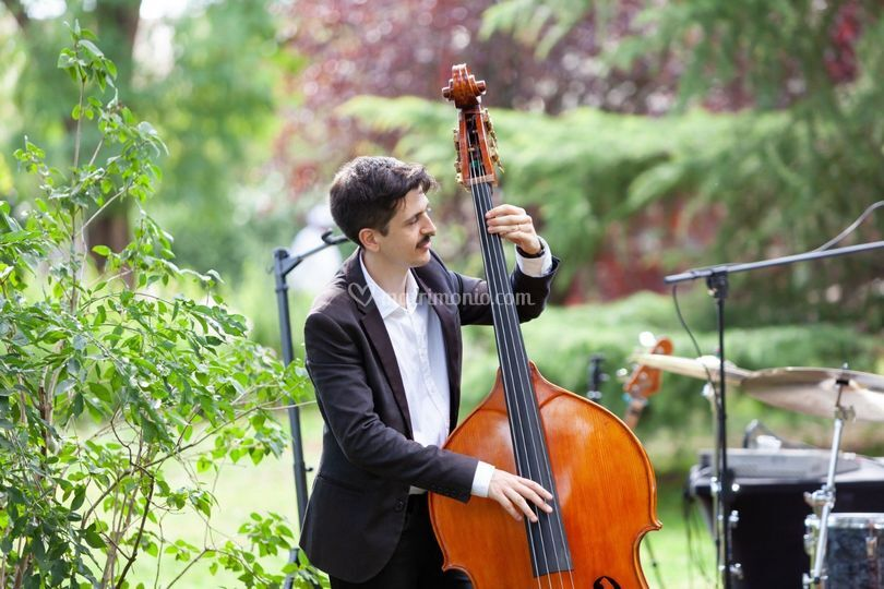Unplugged Trio