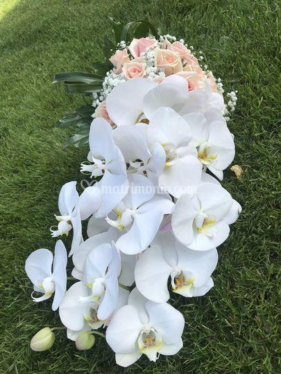 Bouquet sposa con orchidee