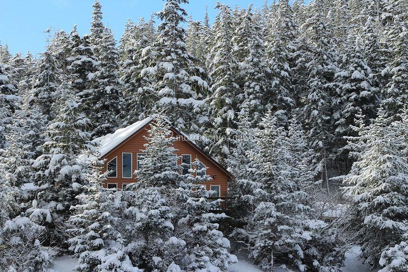 Viaggi sulla neve