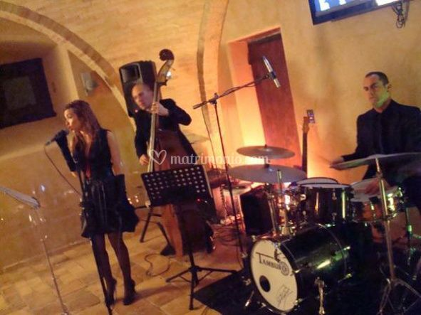 Jazz Vision Live