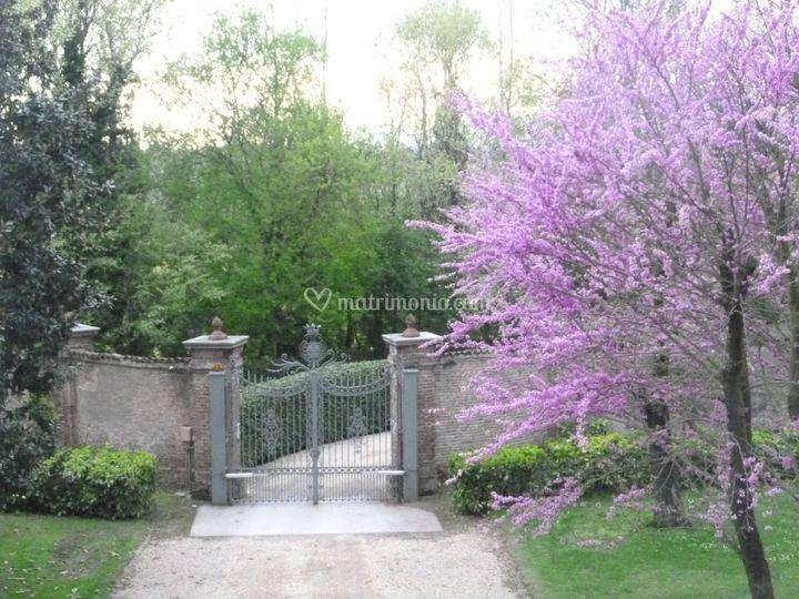 Il giardino - vista dal salone