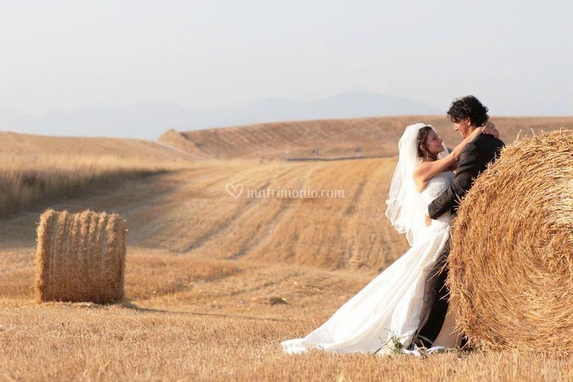Quel campo di grano!!!