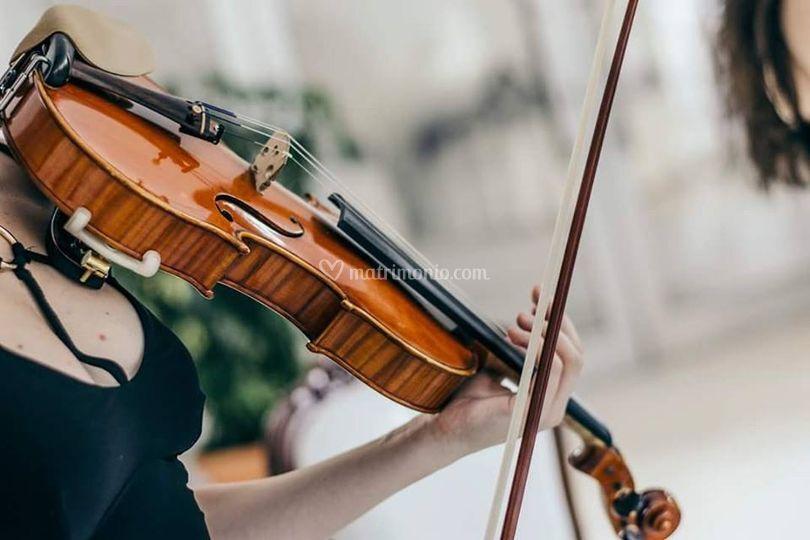 Anastasia Candeloro - Violinista