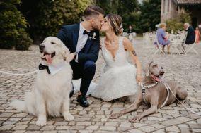 Marcella Fava Wedding Photographer